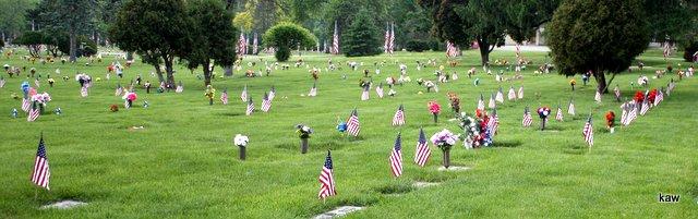 Photo of veteran's flags at Cedar Memorial.