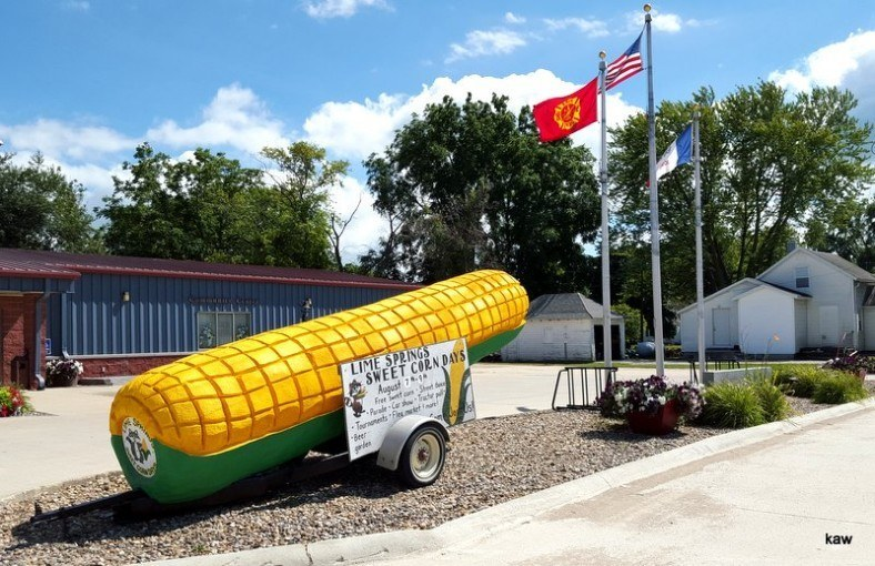 Photo for Sweet Corn Days