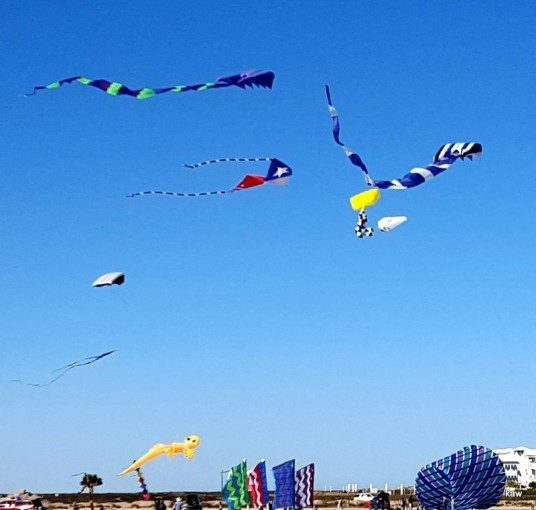 Photo of kites flying on South Padre Island.